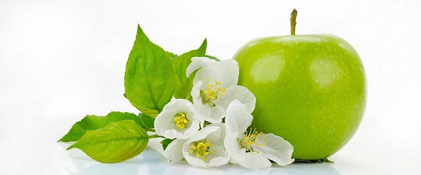 تولید سیب سالم